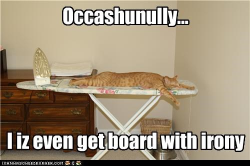 caption,captioned,cat,iron,ironing board,irony,literalism,occasionally,pun,statement