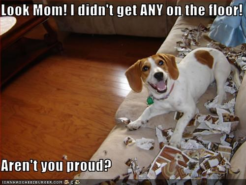 beagle couch excited Hall of Fame magazine mess mom shred - 3459227136