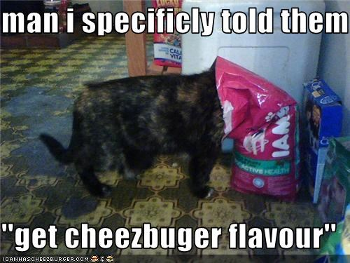 Cheezburger Image 3460172800
