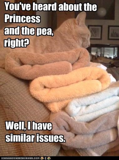 You've heard about the Princess and the pea, right? Well, I have similar issues.