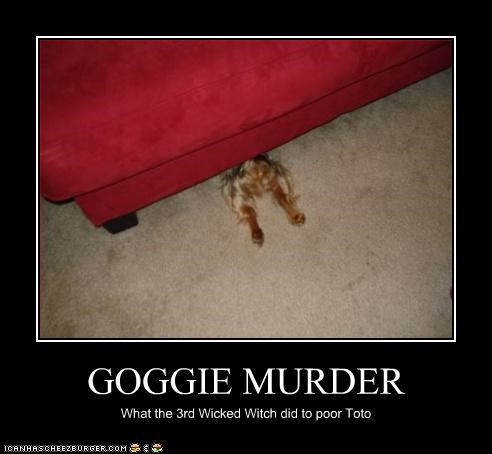 GOGGIE MURDER What the 3rd Wicked Witch did to poor Toto