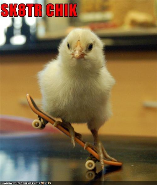 lolchick,pun,skateboard