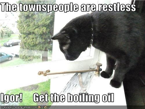 cat frankenstein window - 3461822976