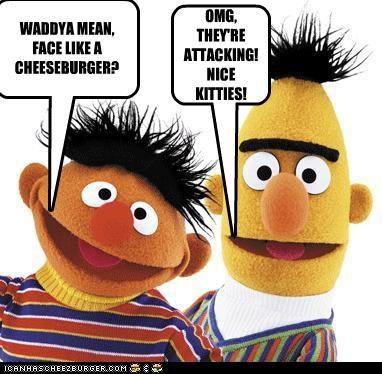 Cheezburger Image 3462776064