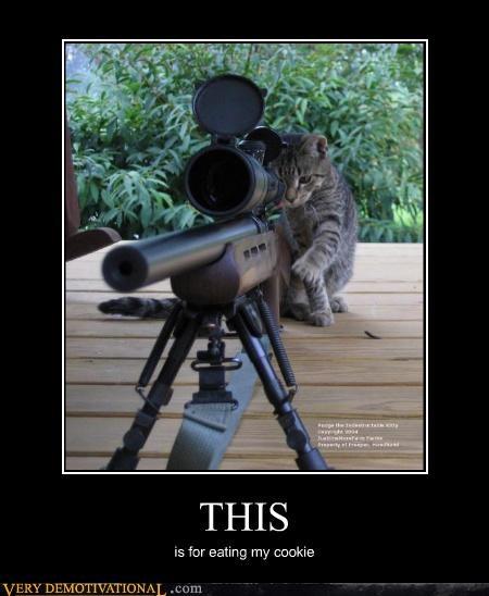 cat sniper cookies - 3468136704