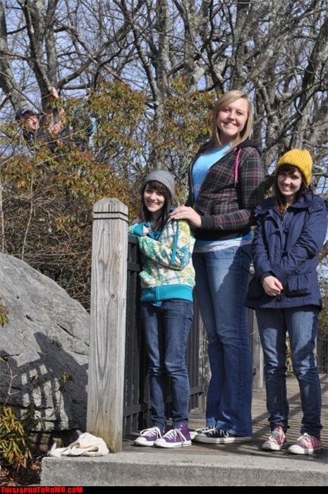 creeper group photobomb tree - 3470190592