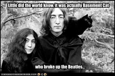 band,basement cat,john lennon,lolcats,musician,the Beatles,yoko ono
