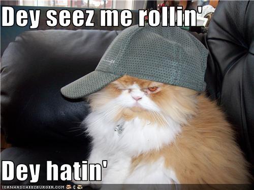 costume,hat,rollin