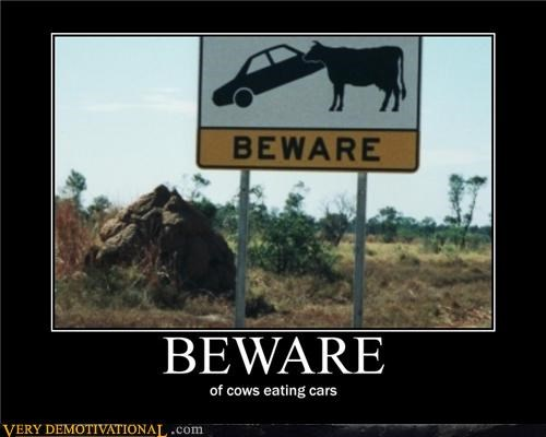 animals,beware,cars,cows,dangerous,impossible,sign,Terrifying