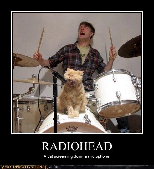microphone radiohead Cats - 3475425280