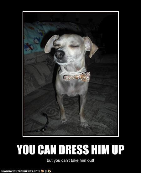 YOU CAN DRESS HIM UP but you can't take him out!