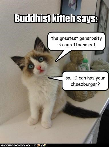 buddhist cheezburger want - 3475673088