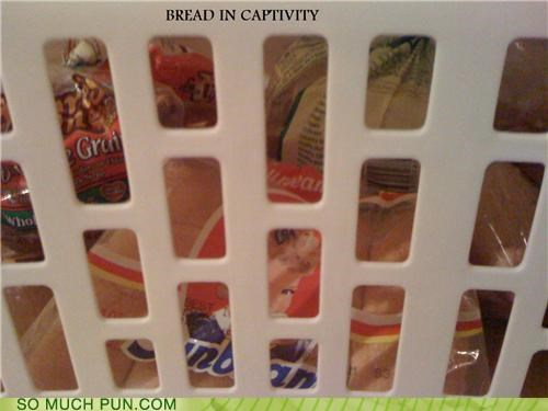 basket bread captive laundry trap - 3476730368