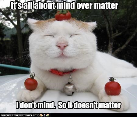 It's all about mind over matter I don't mind. So it doesn't matter