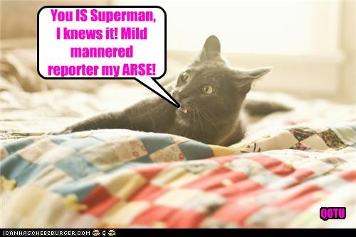 You IS Superman, I knews it! Mild mannered reporter my ARSE! QOTU