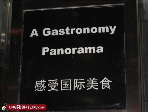 gastronomy,panorama,sign,why