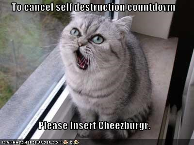 Cheezburger Image 347909376