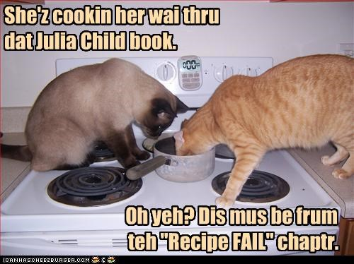 "She'z cookin her wai thru dat Julia Child book. Oh yeh? Dis mus be frum teh ""Recipe FAIL"" chaptr."