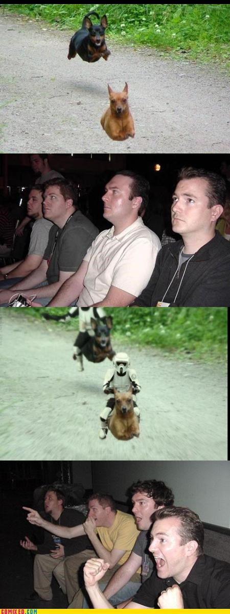 animals,awesome,dogs,endor,reaction guys,speeder bikes,star wars