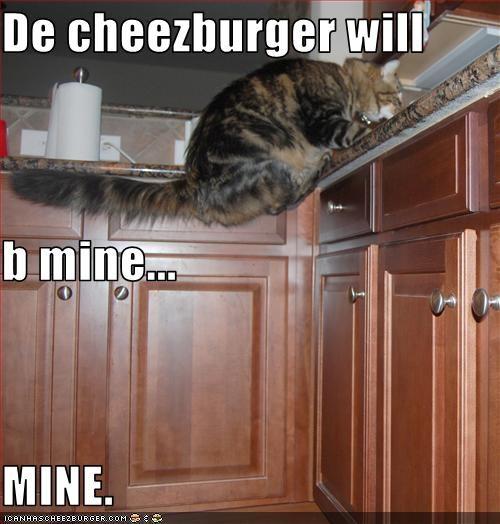 Cheezburger Image 3479832576