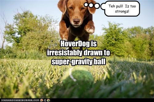 HoverDog is irresistably drawn to super-gravity ball Teh pull! Iz too strongz!