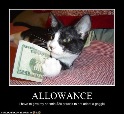 ALLOWANCE I have to give my hoomin $20 a week to not adopt a goggie