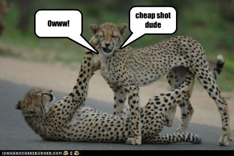 Owww! cheap shot dude