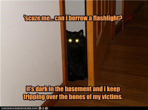 'scuze me... can i borrow a flashlight?          it's dark in the basement and i keep  tripping over the bones of my victims.