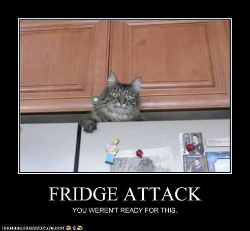FRIDGE ATTACK YOU WEREN'T READY FOR THIS.