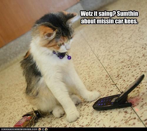 confused keys phone - 3482462208