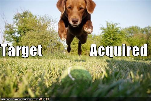 grass jump puppy Target - 3483427328