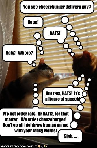 You see cheezeburger delivery guy? Nope! RATS! Rats? Where? Not rats, RATS! It's a figure of speech! We not order rats. Or RATS!, for that matter. We order cheezeburger! Don't go all highbrow human on me with your fancy words! Sigh, ...