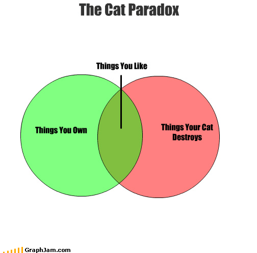 Cats,destroy,like,own,paradox,venn diagram