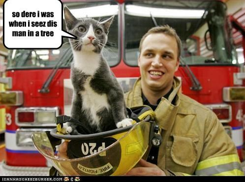 caption captioned cat fire department fireman rescue retelling story tree - 3485759744