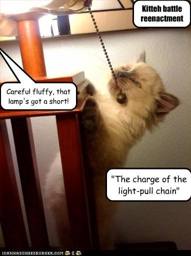 """The charge of the light-pull chain"" Careful fluffy, that lamp's got a short! Kitteh battle reenactment"