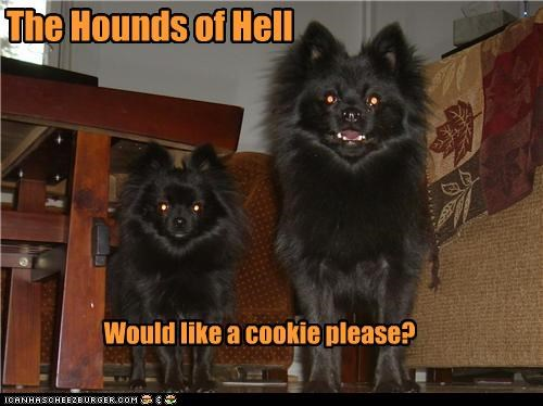 The Hounds of Hell Would like a cookie please?