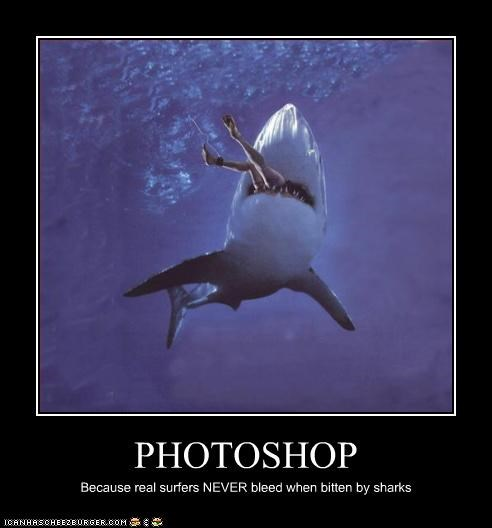 PHOTOSHOP Because real surfers NEVER bleed when bitten by sharks
