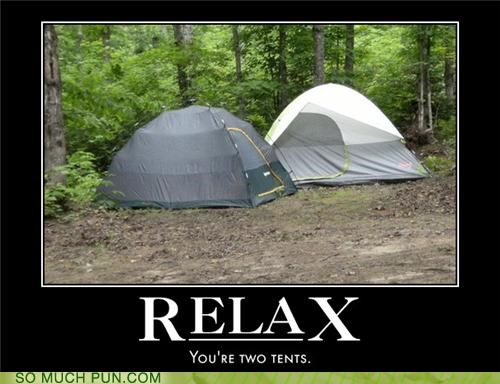 bear camping Forest tents wood - 3489099520