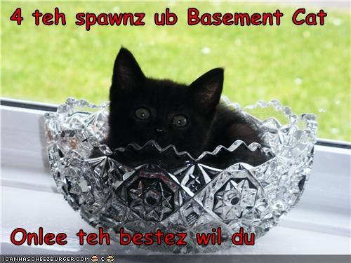 Cheezburger Image 3489310464