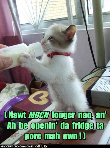 ( Nawt longer nao, an' Ah be openin' da fridge ta pore mah own ! ) MUCH
