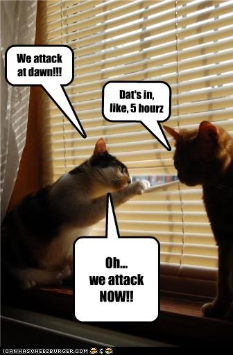 We attack at dawn!!! Dat's in, like, 5 hourz Oh... we attack NOW!!