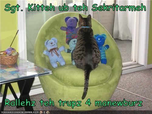 Cheezburger Image 3490075648