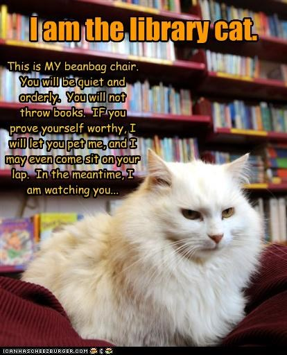 grumpy,library,rules