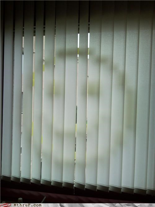 art blinds boredom clever creativity in the workplace creepy cubicle boredom cubicle prank decoration happy face paper signs pervert post its prank sass screw you smile sneaky surprise Terrifying window wiseass