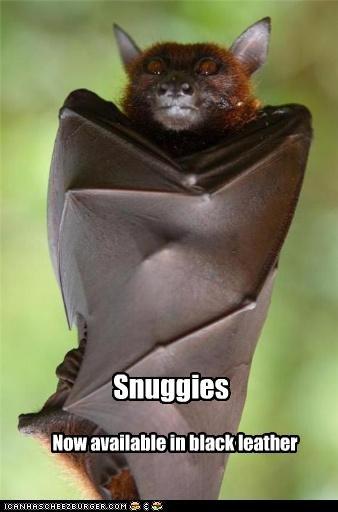bat lolbats snuggie - 3491842048