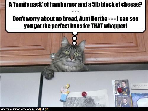 Cheezburger Image 3492738048