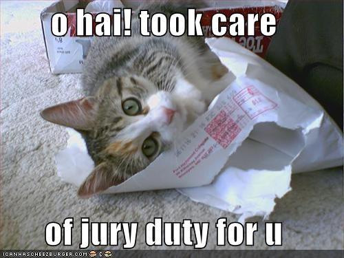 o hai! took care of jury duty for u - Cheezburger - Funny