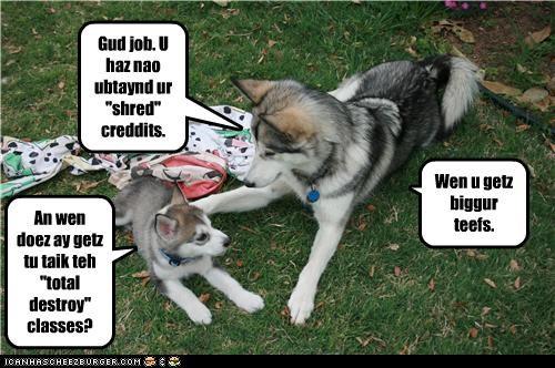 "Gud job. U haz nao ubtaynd ur ""shred"" creddits. An wen doez ay getz tu taik teh ""total destroy"" classes? Wen u getz biggur teefs."