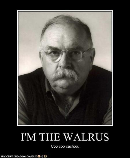 I'M THE WALRUS Coo coo cachoo.