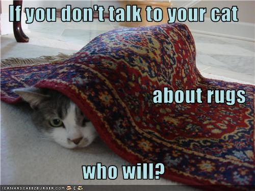 If you don't talk to your cat about rugs who will?